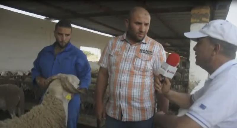 استجواب مع صاحب ضيعة الرامى بلخيايطة حول اسعار كبش العيد